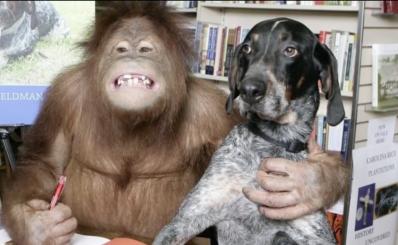 Orangutang & Dog
